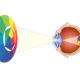 Глаз и цветовой круг