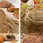Alimentary fiber